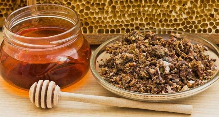 Применение пчелиного клея