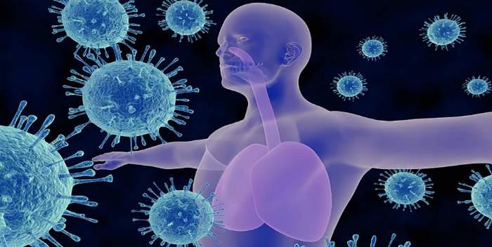 Возможные причины заболевания трахеитом