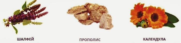 Состав Снорекс