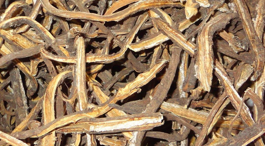 высушенный корень лопуха